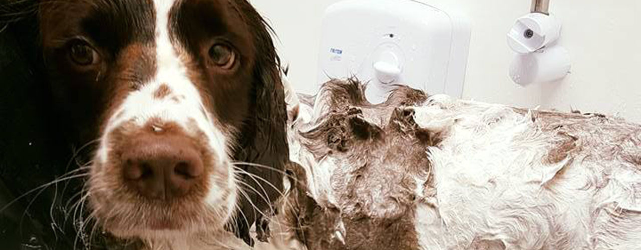 washingSlider